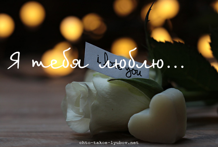 Я тебя люблю... и бутон белых роз...