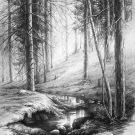 Рисунки для срисовки карандашом природа