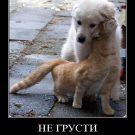 Не грусти придет любовь и все исправит