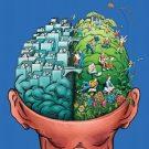 Место эмоций в мозгу