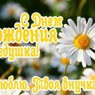 С Днем рождения дедушка! (от внучки) - картинки
