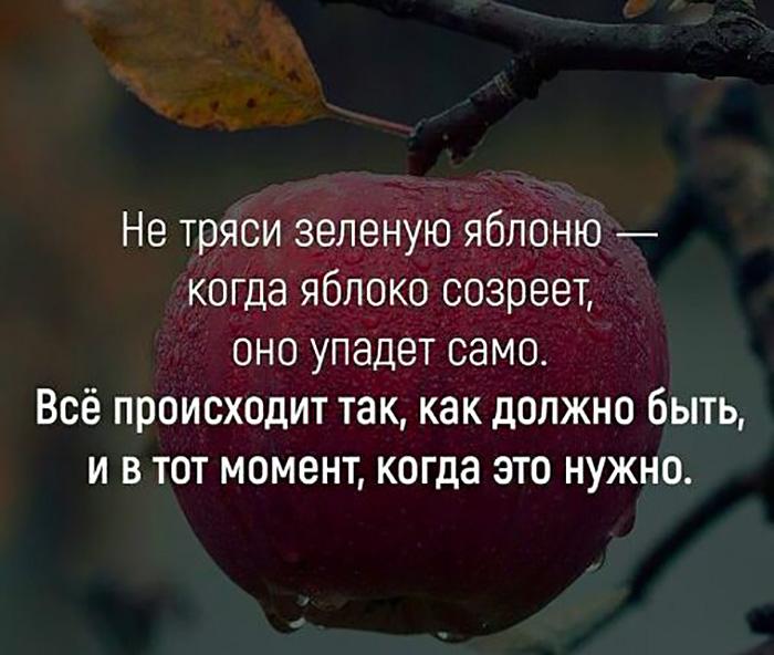 Не тряси зеленую яблоню - когда яблоко созреет, оно само упадет...