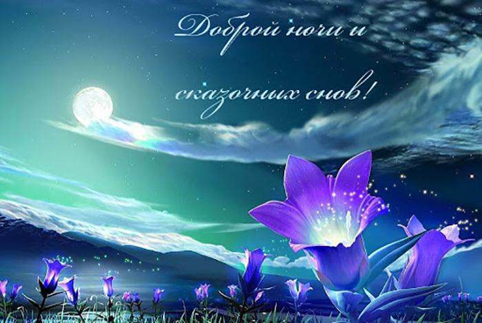 Доброй ночи и сказочных снов