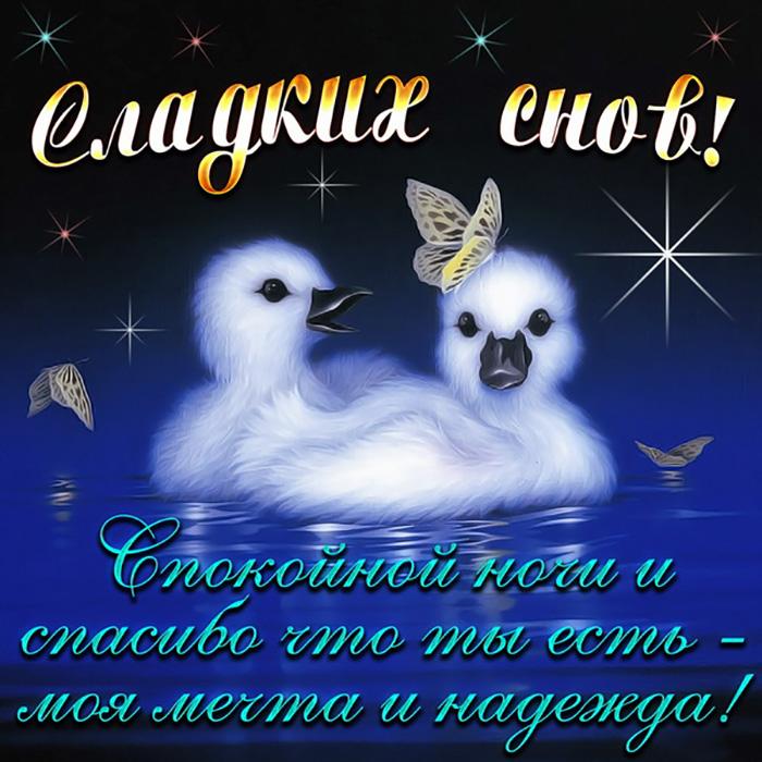 Спокойной ночи и спасибо что ты есть - моя мечта и надежда