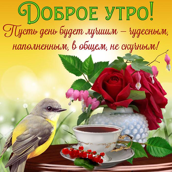 Доброе утро! Пусть день будет лучшим - чудесным, наполненным...