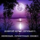 Доброй ночи, друзья