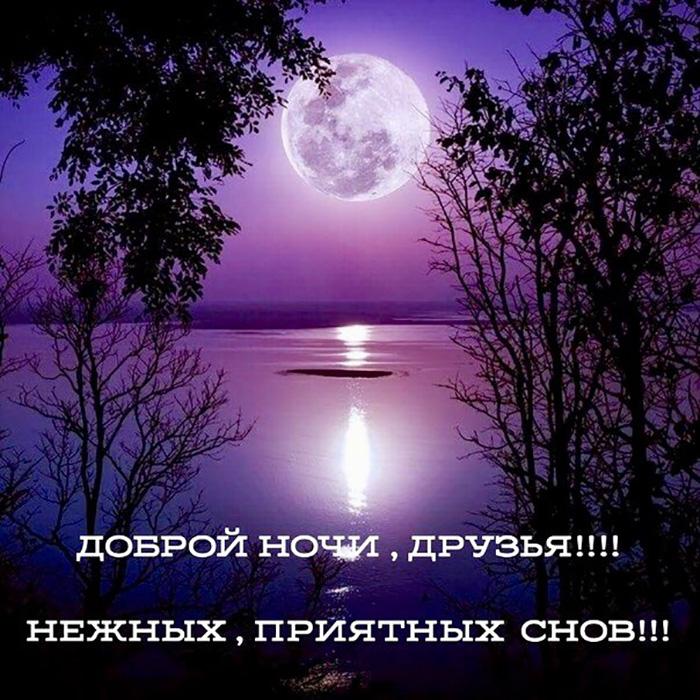 Доброй ночи, друзья! Нежных, приятных снов!