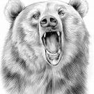 Рисунки Медведь