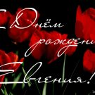 С Днем рождения Евгения! - картинки