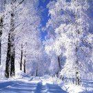 Загадки про декабрь