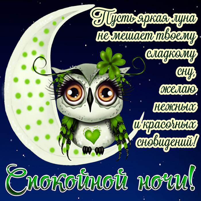 Пусть яркая луна не мешает твоему яркому сну, желаю нежных и красивых...