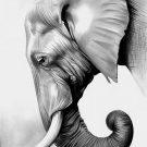 Слон, слоненок - рисунки