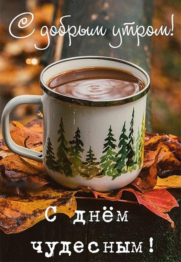 С добрым утром! С днём чудесным!