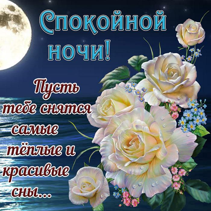 Спокойной ночи! Пусть тебе сняться самые теплые и красивые сны...