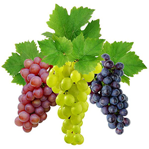Загадки о винограде
