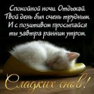 Спокойной ночи, отдыхай