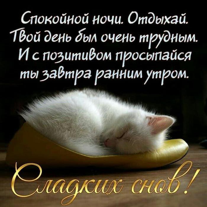 Спокойной ночи. Отдыхай. Твой день был очень трудным...