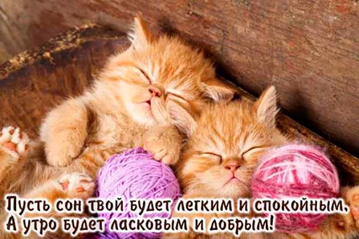 Пусть сон твой будет легким и спокойным, А утро будет ласковым...