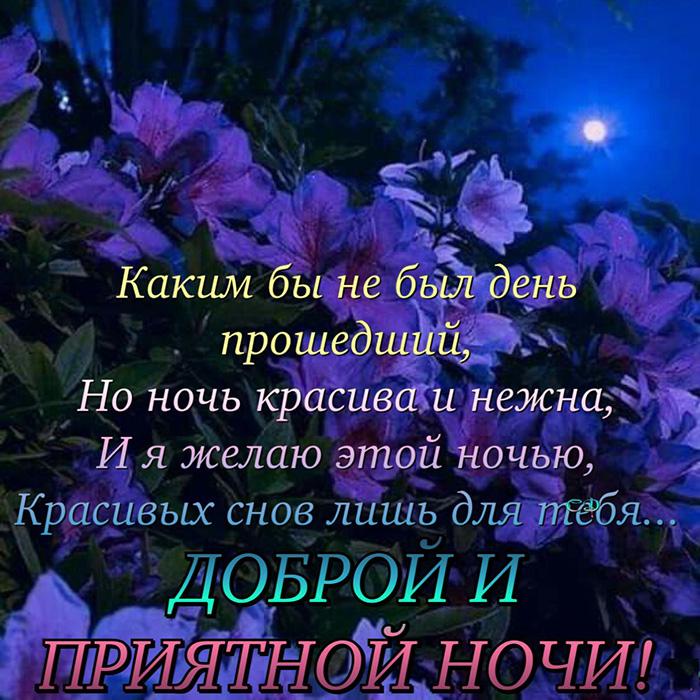 Каким бы не был день прошедший, Но ночь красива и нежна, И я желаю этой ночь...