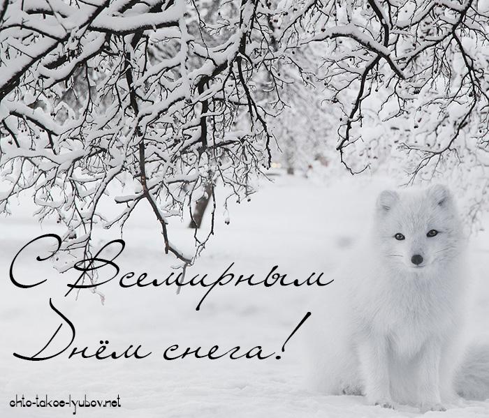С Всемирным днём снега