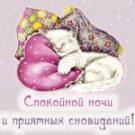 Спокойной ночи и приятных сновидений!