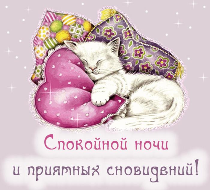 Спокойной ночи и приятных сновидений