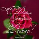 С Днем рождения Диана! - картинки