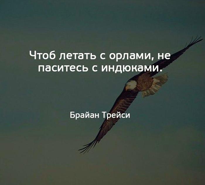 Чтоб летать с орлами, не паситесь с индюками. Брайан Трейси