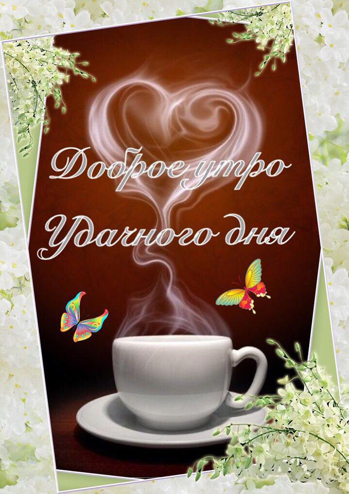 Доброе утро! Удачного дня!