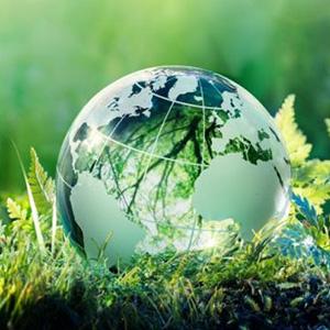 Стихи об окружающей среде
