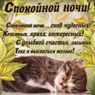 Спокойной ночи, снов чудесных
