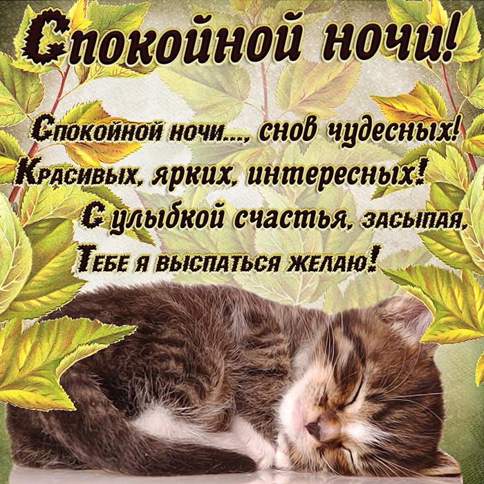 Спокойной ночи,.. снов чудесных! Красивых, ярких, интересных! С улыбкой счастья, засыпая,..
