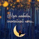 Моя любовь, спокойной ночи