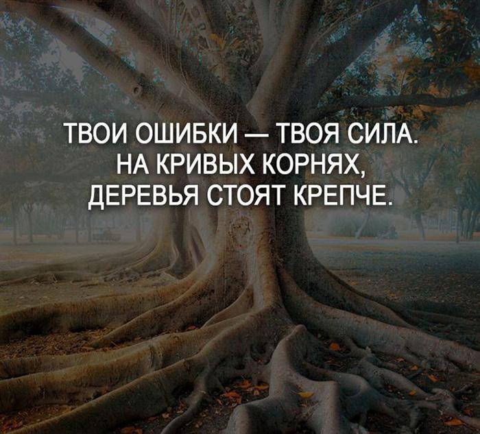 Твои ошибки - твоя сила. На кривых корнях, деревья стоят крепче