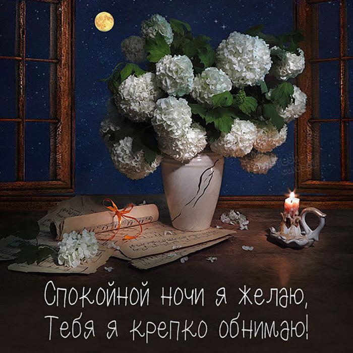 Спокойной ночи я желаю, тебя я крепко обнимаю!