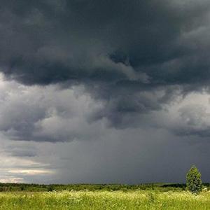 Кажется дождь собирается - стихи