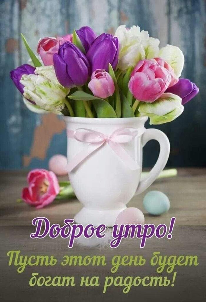 Доброе утро! Пусть этот день будет богат на радость!