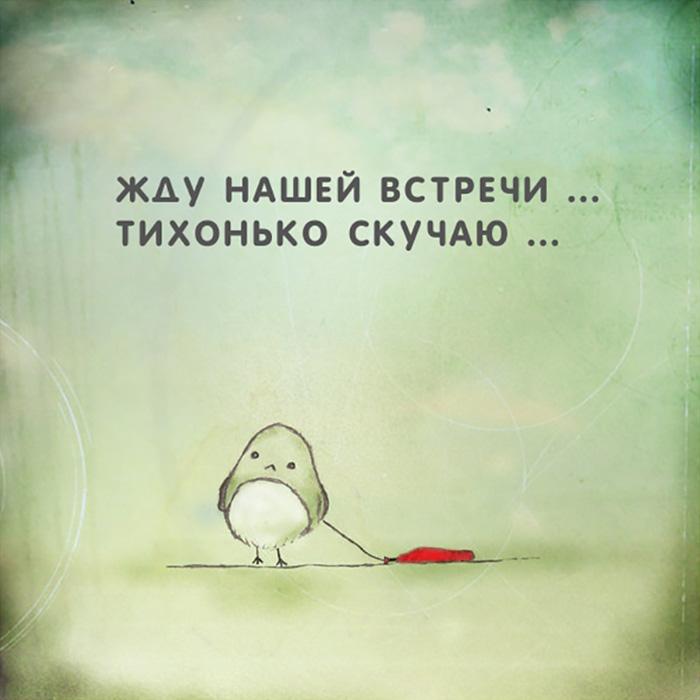 Жду нашей встречи... тихонько скучаю...