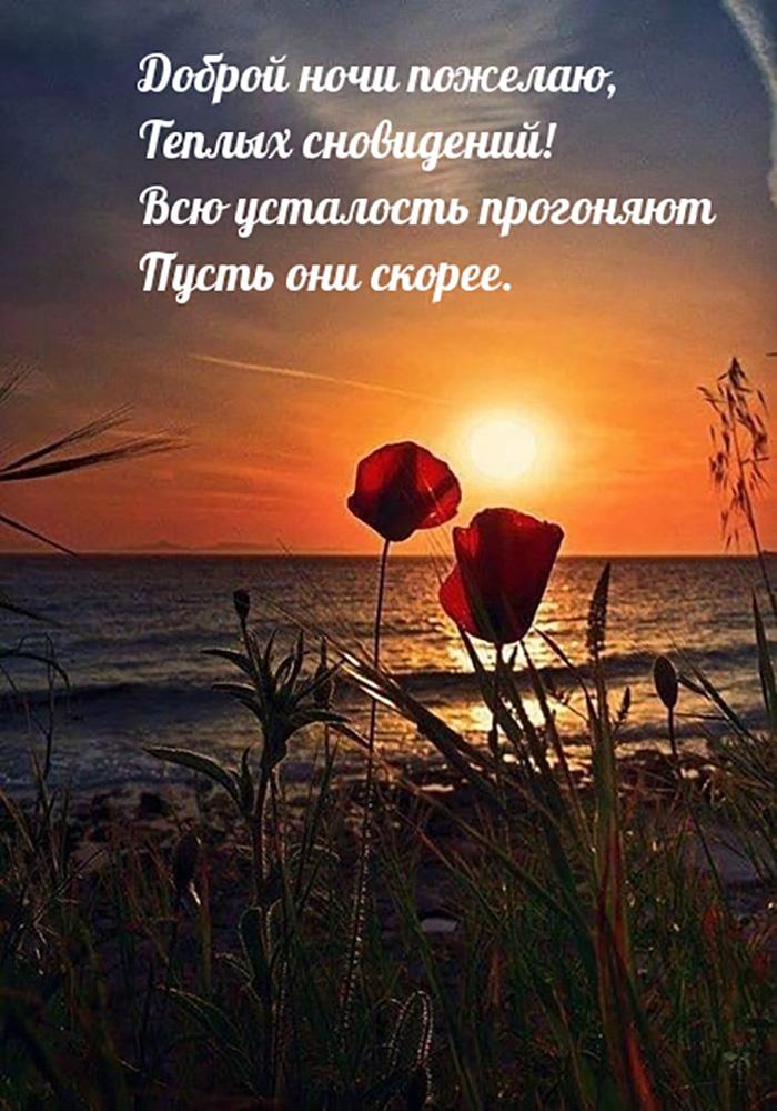 Доброй ночи пожелаю, Тёплых сновидений! Всю усталость прогоняют...