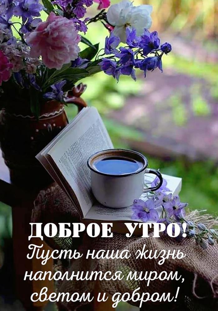 Доброе утро! Пусть наша жизнь наполниться миром, светом и добром!