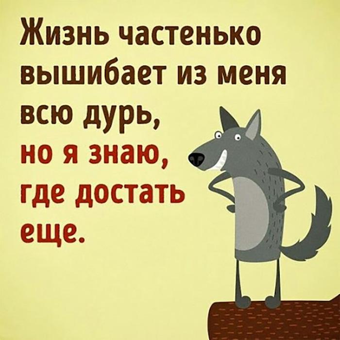 Жизнь частенько вышибает из меня всю дурь, но я знаю,..
