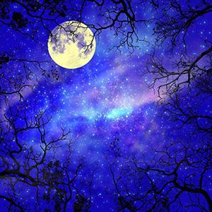 Золото холодное луны - Сергей Есенин