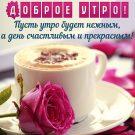 Пусть утро будет нежным, а день счастливым и прекрасным