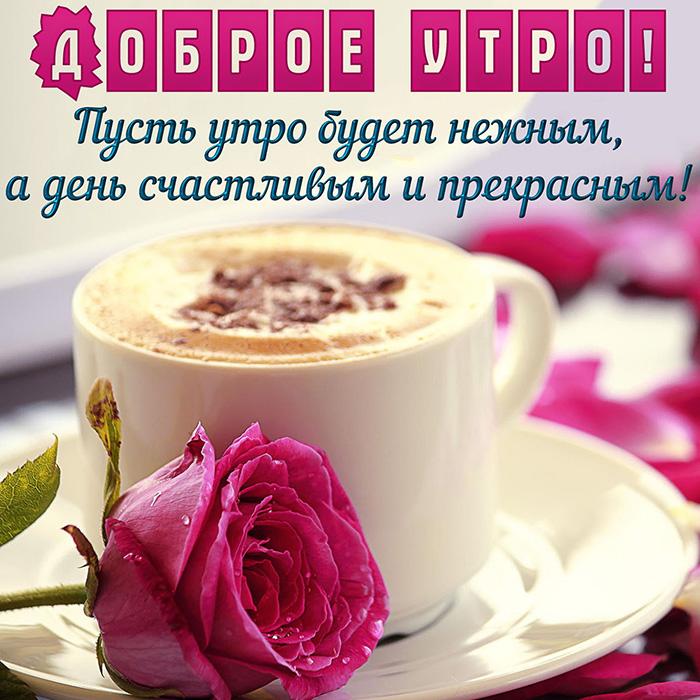 Доброе утро! Пусть утро будет нежным, а день счастливым...