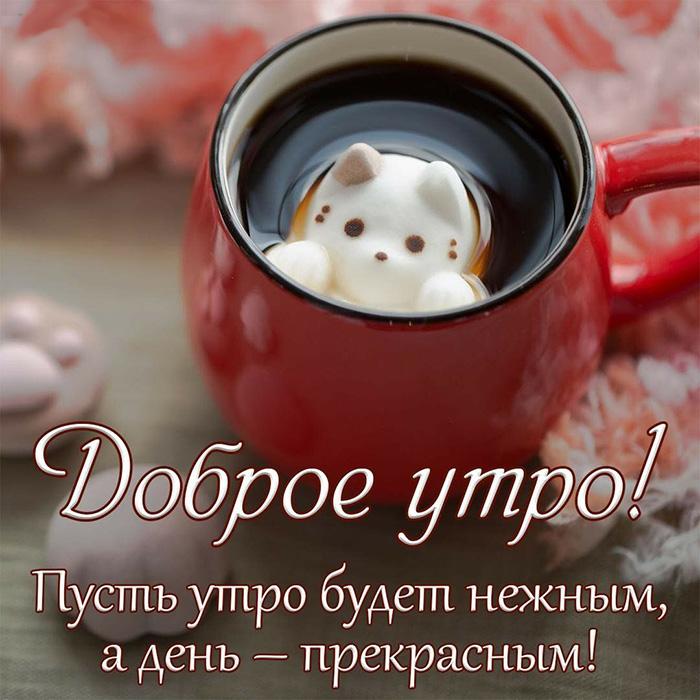 Доброе утро! Пусть утро будет нежным,..