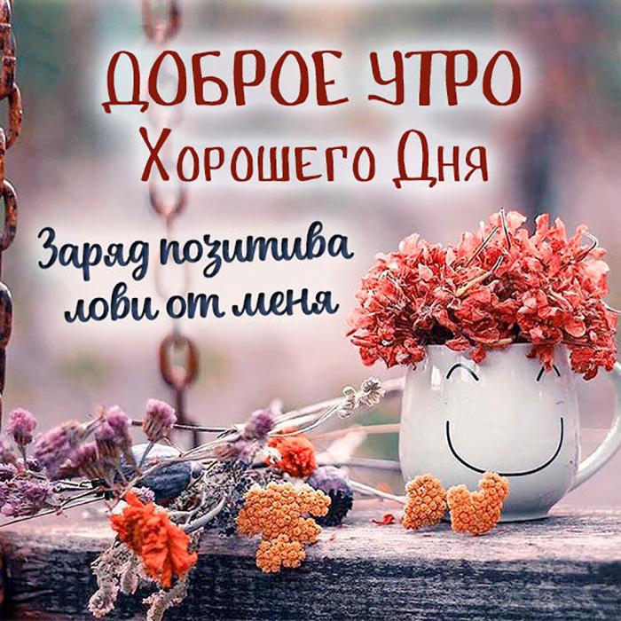 Доброе утро! Хорошего дня! Заряд позитива...